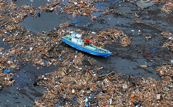 The Sargasso Sea And The Pacific Garbage Patch