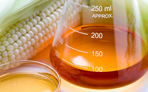 High Fructose Corn Syrup: Toxic or Tame?