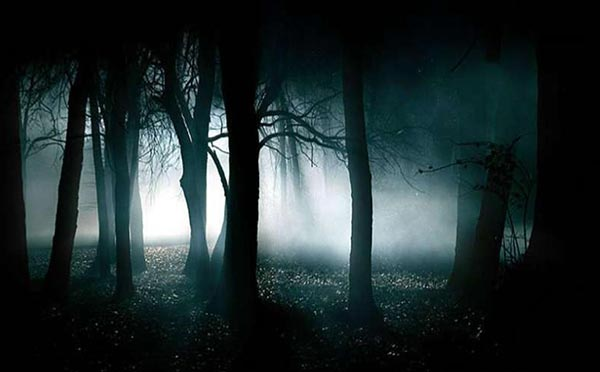 Solving the Haunted Hoia-Baciu Forest