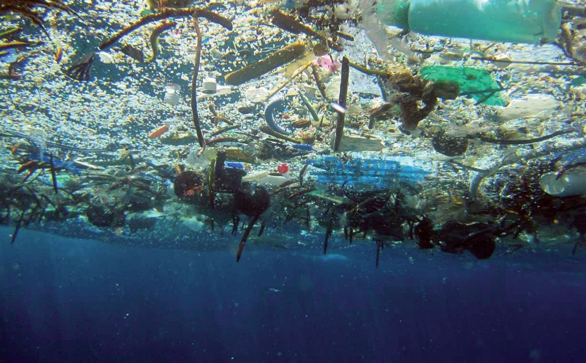 Ocean Plastics: Facts and Falsehoods